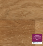 ACCZENT TIMBER OAK 01 (300001)