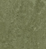 Marmoleum Real pine forest 3255